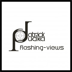 "Logo Gestaltung ""Flashing views"""